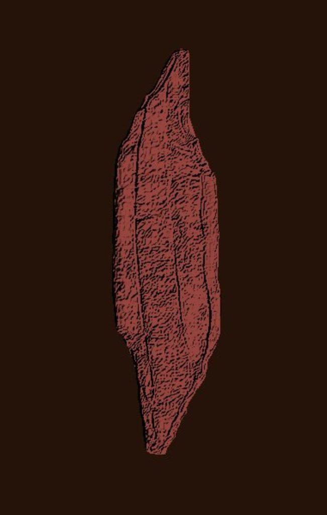 Papagaienschnabelklingendhohlkratzerbohrerschraber (tekening René Loesberg)